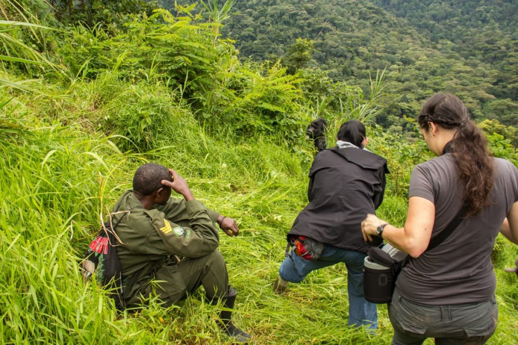 5 Days Uganda Bwindi Gorilla Tour