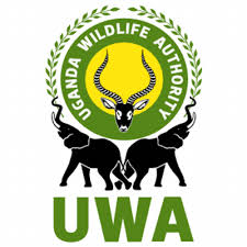 Uganda Wildlife Authority,(UWA)