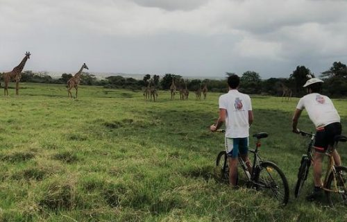 Biking in Arusha national park