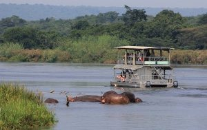 Game Drives in Murchison Falls National Park Uganda