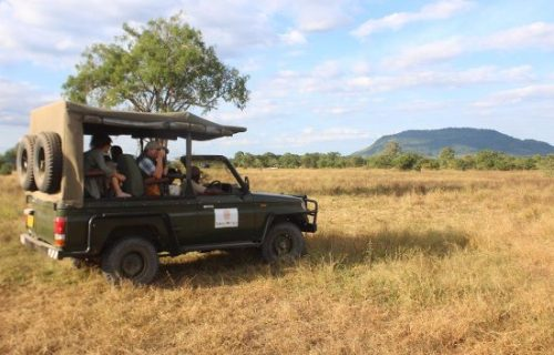 Game drives in selous game reserve