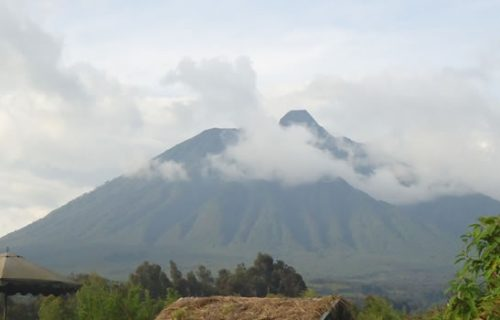 Hiking to the 3 out of the 8 Virunga volcanoes of Mt. Sabinyo, Mt. Gahinga and Mt. Muhavura