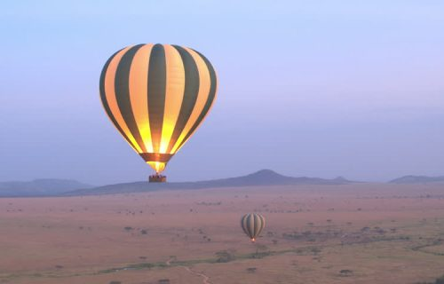Hot air ballooning/aerial tour of the Serengeti
