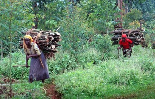 Local People Mount Elgon National Park_600x399