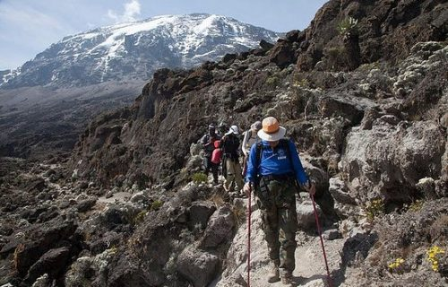 Mountain trekking in Kilimanjaro national park