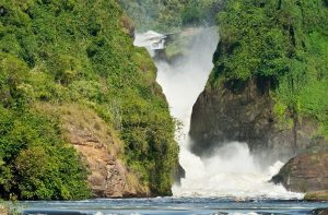 Murchison Falls & Kibale Uganda Tour - 5 days