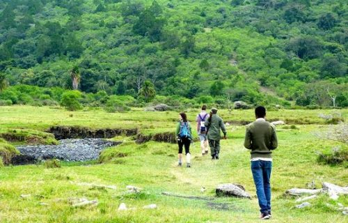 Nature walks in Arusha national park