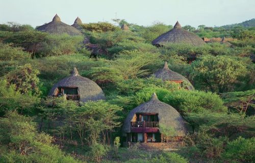 Serengeti safari lodge