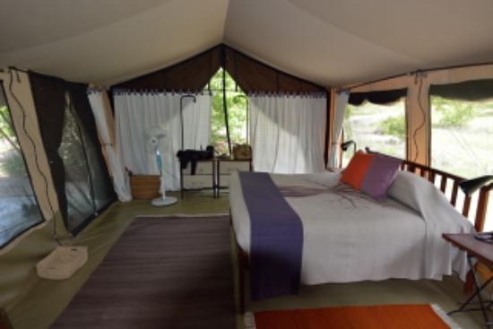 kwihala camp asilia africa
