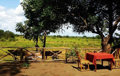 selous adili forest camp